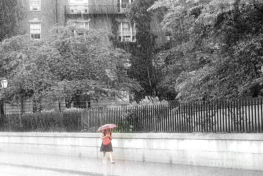 Rain Photograph - Rainy Day by Julie Lueders