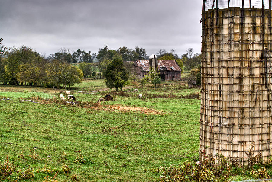 Rainy Photograph - Rainy Day On The Farm by Douglas Barnett