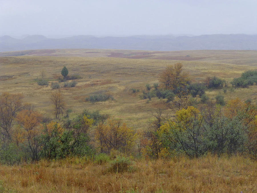 North Dakota Photograph - Rainy Day On The Plains by Cris Fulton