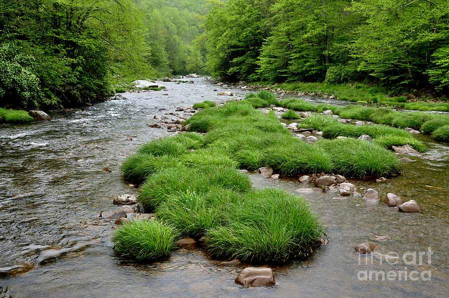 Monongahela National Forest Photograph - Rainy Day On Williams River  by Thomas R Fletcher
