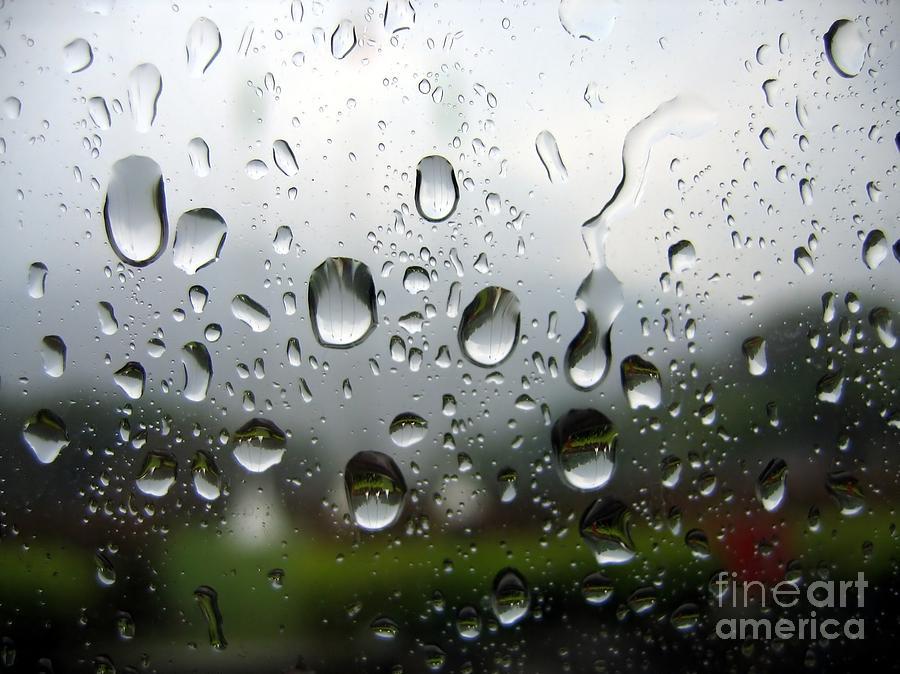 Rain Photograph - Rainy Day by Yali Shi