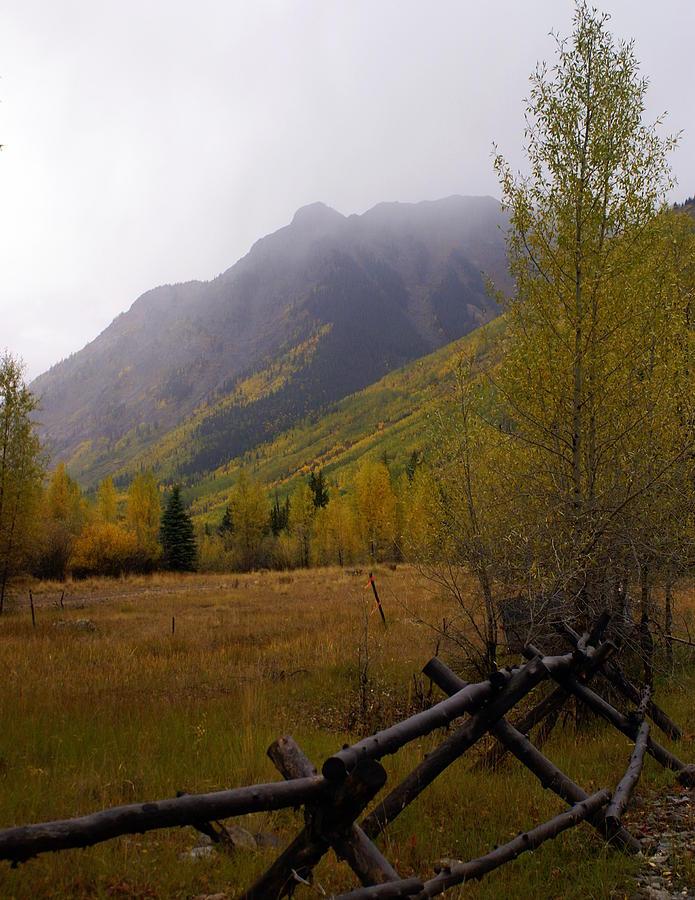 Fall Colors Photograph - Rainy Fall by Marty Koch