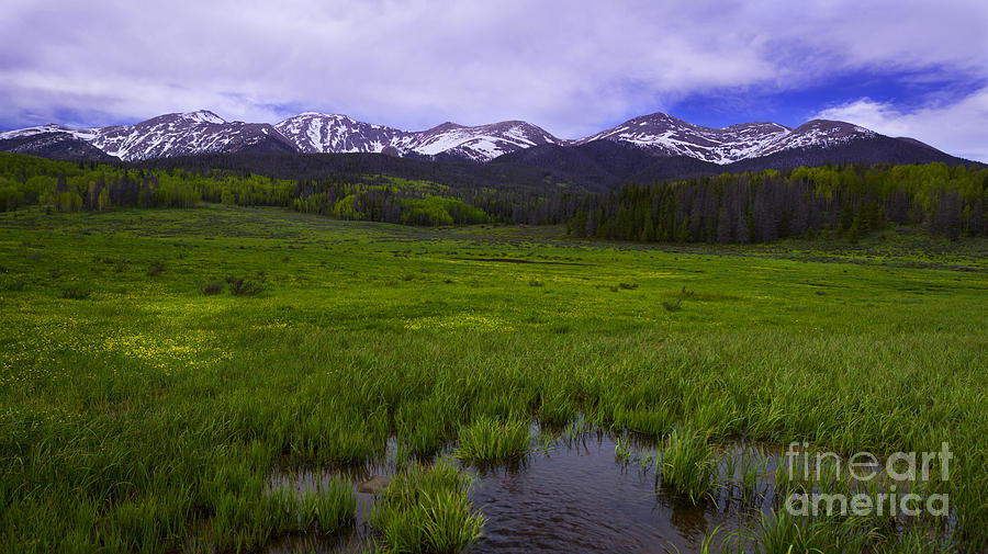 Rocky Mountains Photograph - Rainy Season by Barbara Schultheis