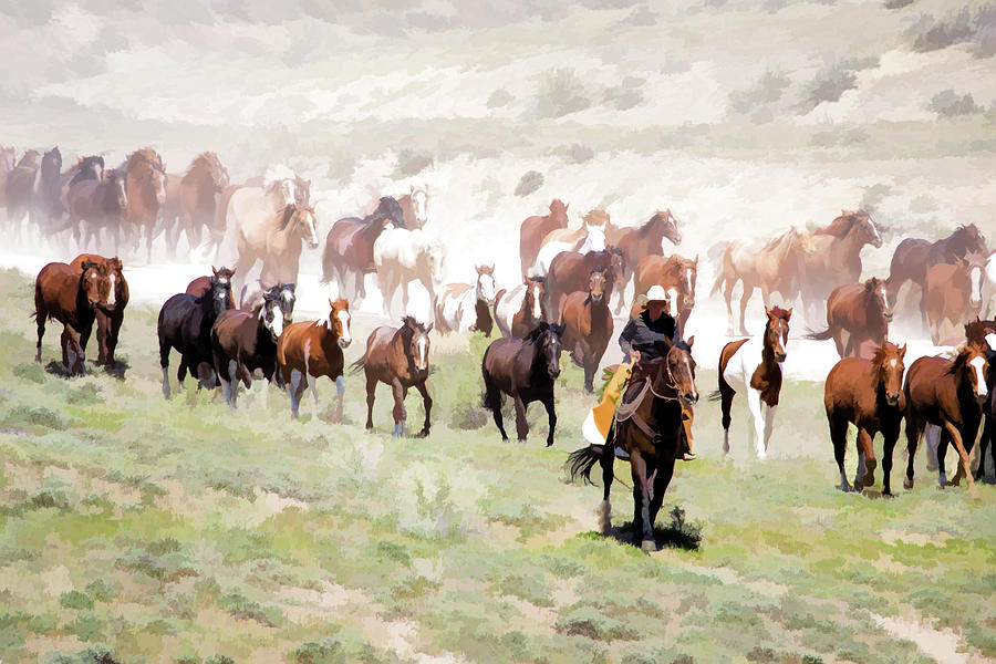 Raising Dust on the Great American Horse Drive in Maybell Colorado by Nadja Rider
