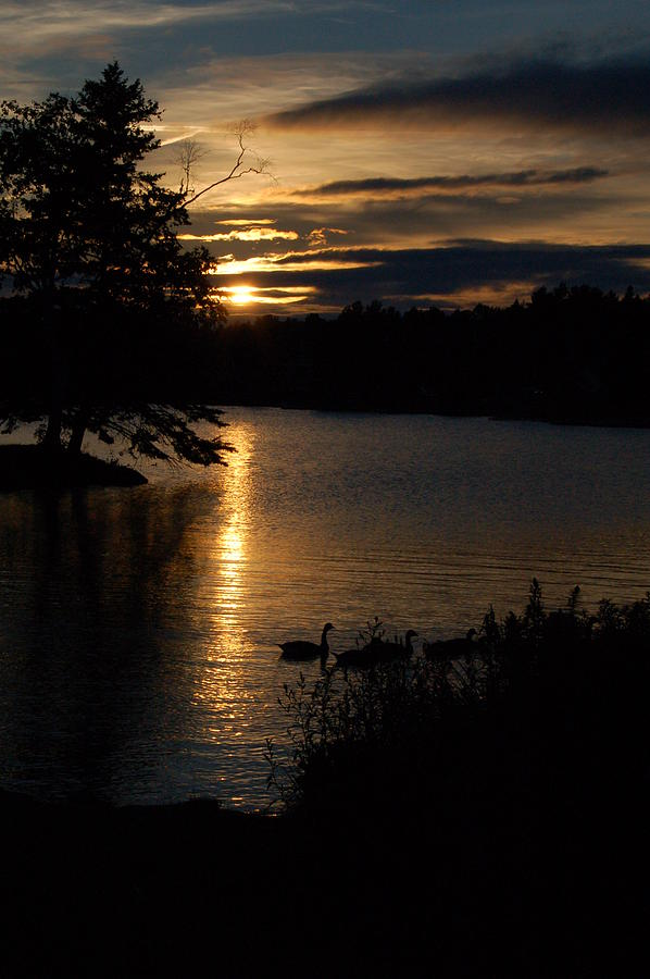 Landscape Photograph - Rangeley Maine by DeLa Hayes Coward
