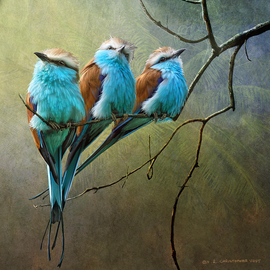 African Painting - Raquet Tailed Rollers by R christopher Vest