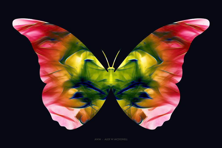 Rasta-Fly by Alex W McDonell