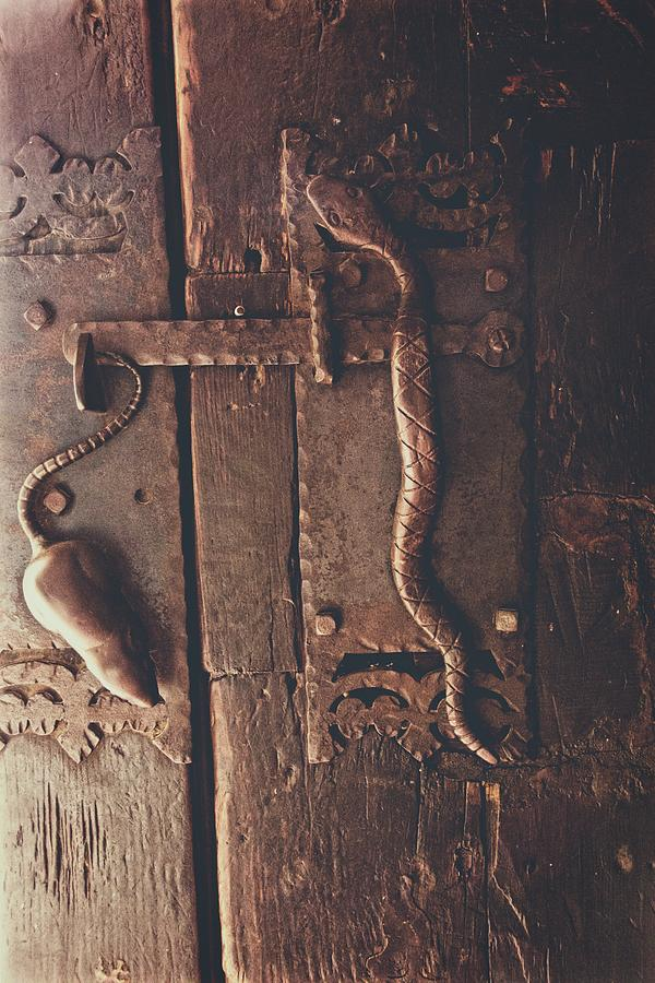 Door Photograph - Rat And Snake by Alice Gipson