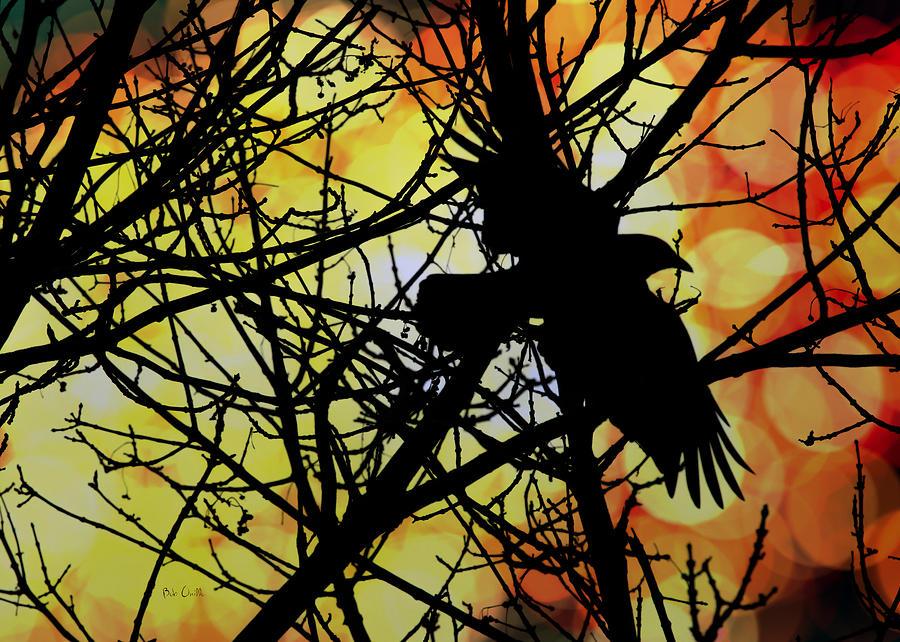 Raven Photograph - Raven by Bob Orsillo
