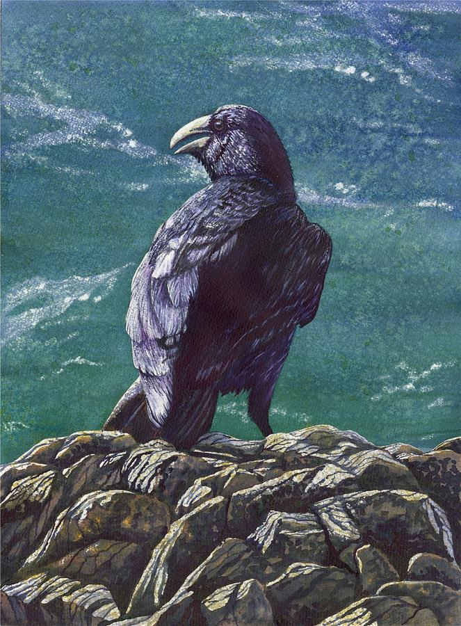 Bird Painting - Raven by Catherine G McElroy