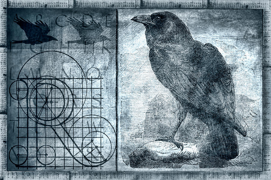 Raven Photograph - Raven Etching Photomontage by Carol Leigh
