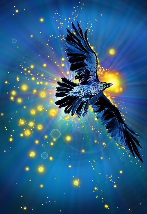 Raven First Bird Drawing