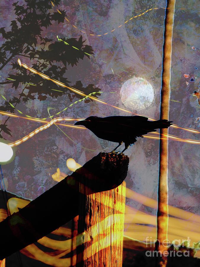 Ghosts Photograph - Ravens Night by Robert Ball