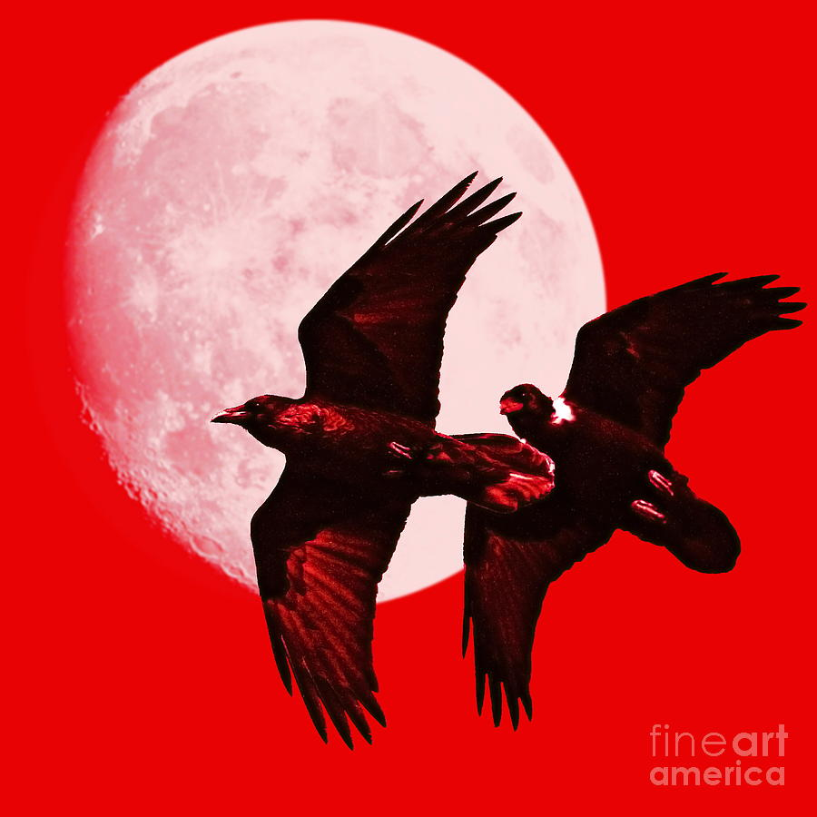 Red Photograph - Ravens Of The Moon . Red Square by Wingsdomain Art and Photography
