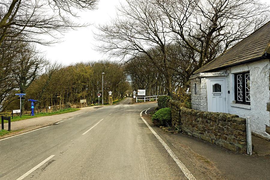 Ravenscar Village Photograph
