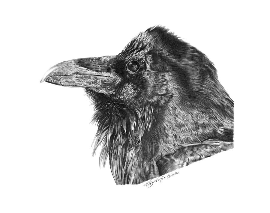 Ravenscroft the Raven by Abbey Noelle