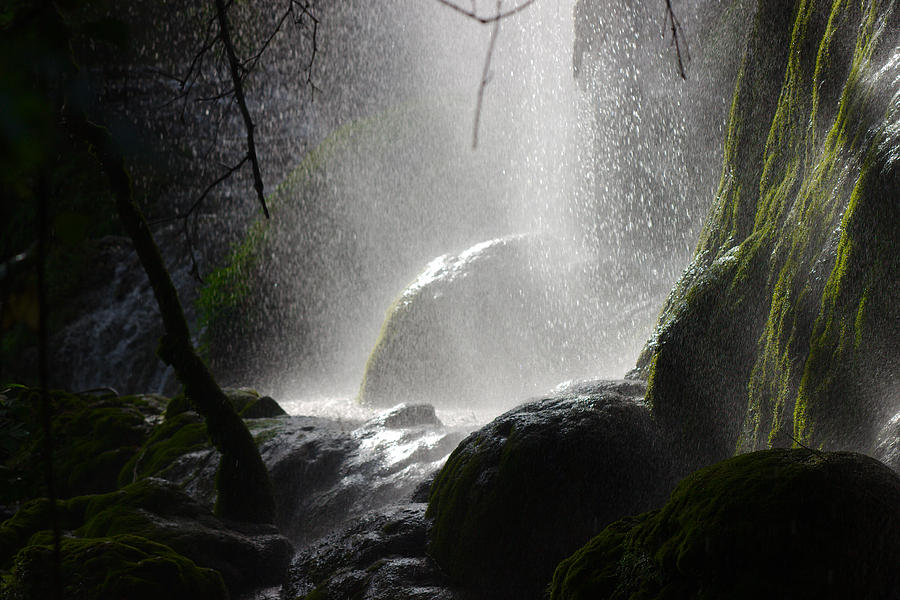 Light Photograph - Ray Of Light by James Smullins