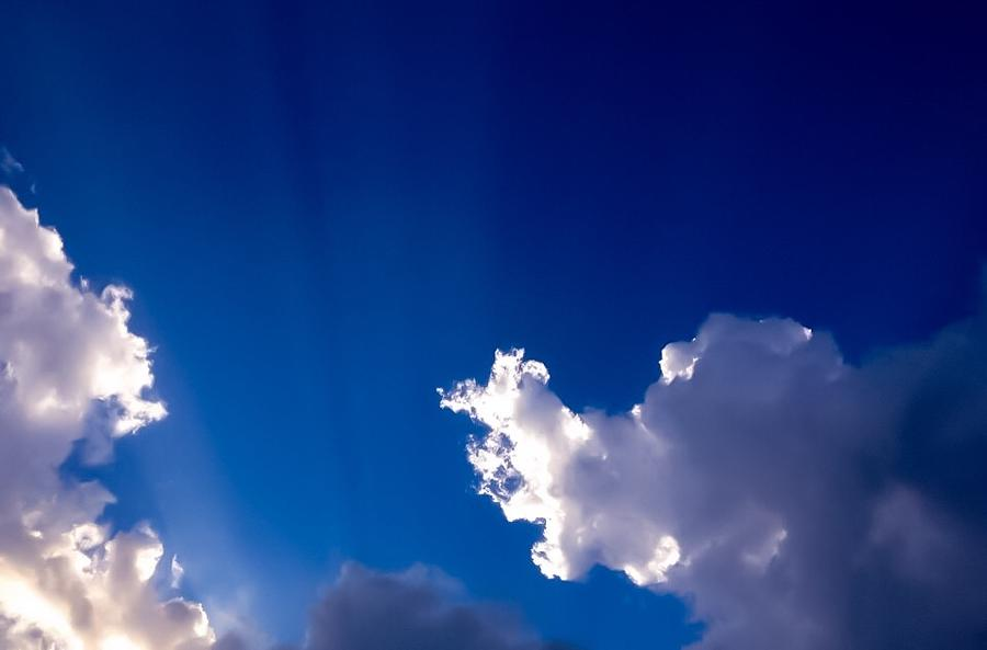 RAYS by Michael Melillo