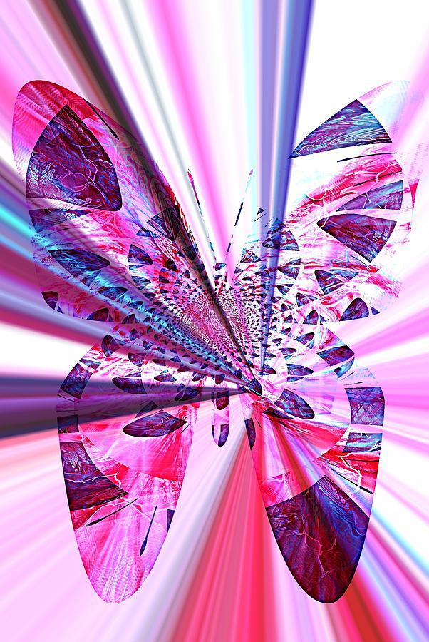 Rays Photograph - Rays Of Butterfly by Amanda Eberly-Kudamik