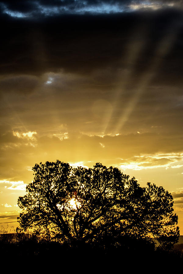 Rays Of Light, Sunrise 9/13/2016 Photograph