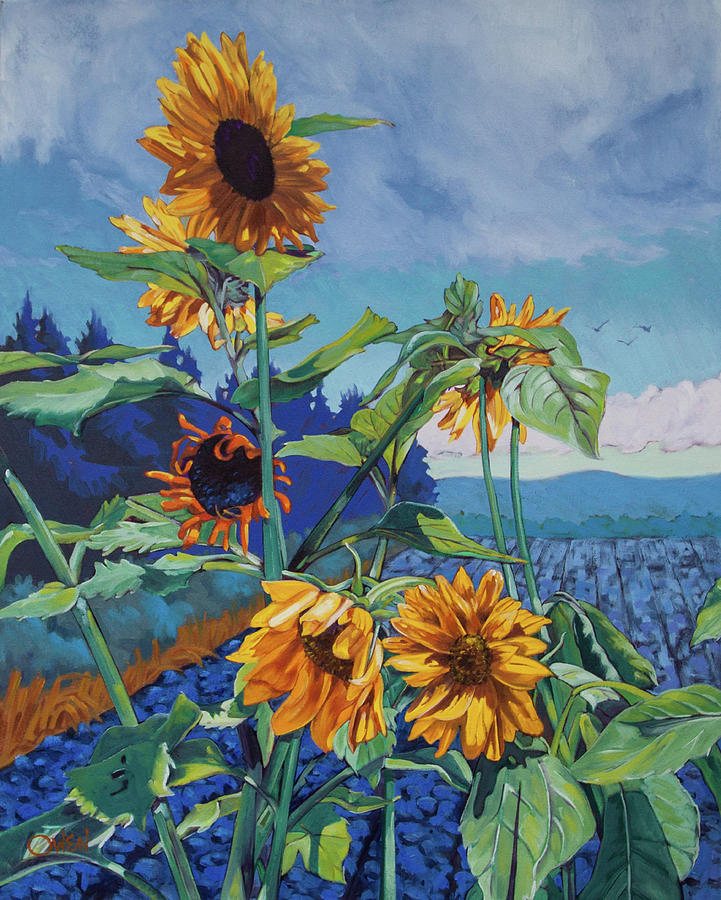 Ray's Sunflowers by Rob Owen