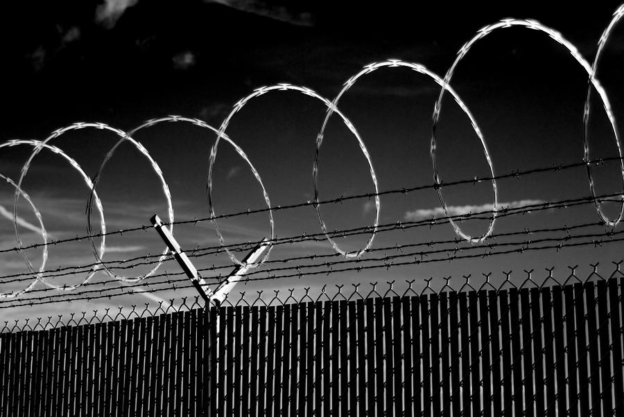 Razor Wire in the Sun by Beverly Stapleton