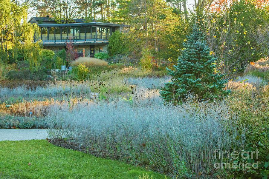 RBG Rock Garden Photograph by Marilyn Cornwell
