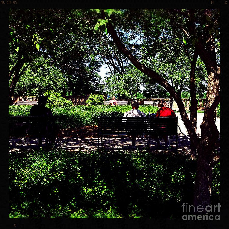 Reading In The Park - City Of Chicago Photograph