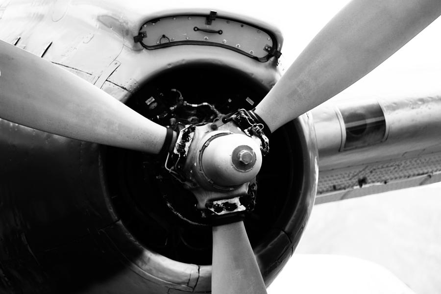 Ready for Flight by Jackie Farnsworth