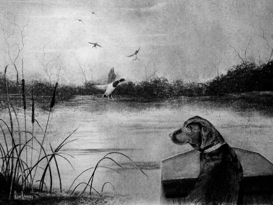 Duck Hunting Drawing - Ready To Fetch by Ron Landry