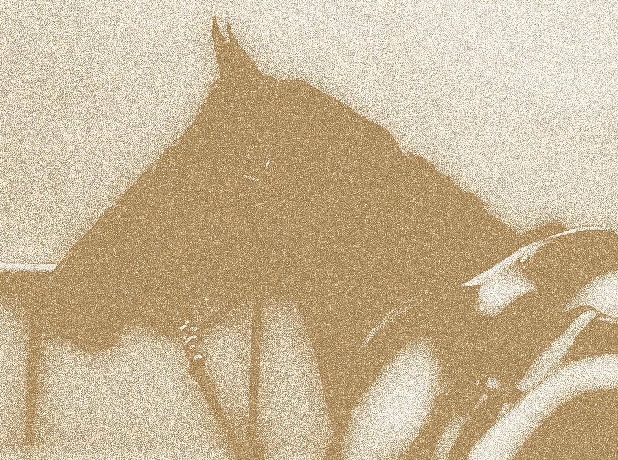 Horses Digital Art - Ready To Ride by Donna Thomas