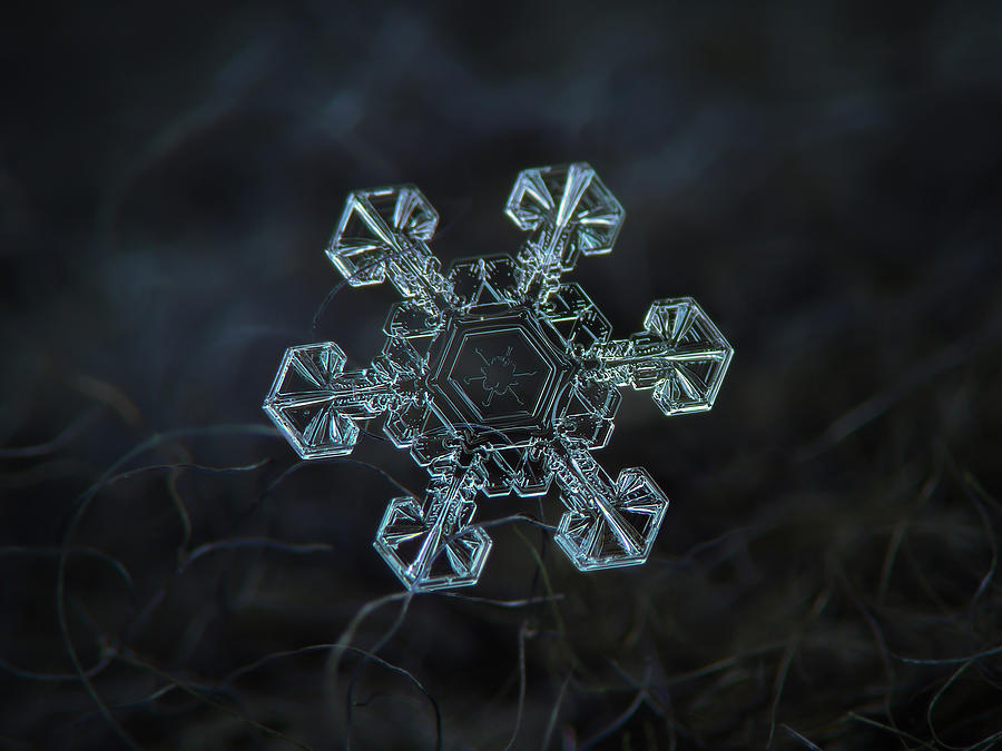 Real snowflake - Ice crown new by Alexey Kljatov