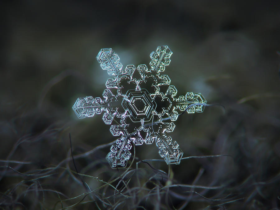 Snowflake Photograph - Real Snowflake - Slight Asymmetry New by Alexey Kljatov