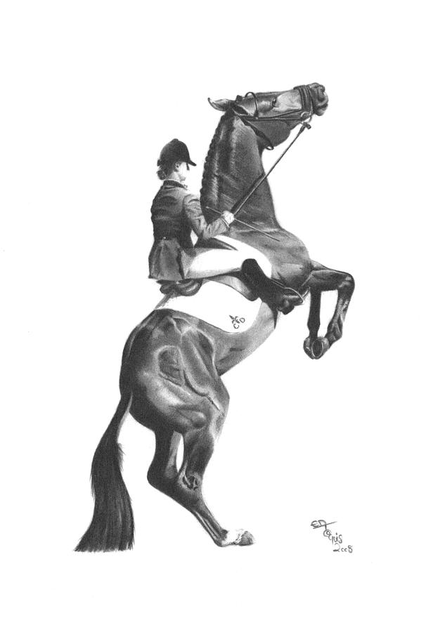 Horse Drawing - Rearing Up by Ed Teasdale