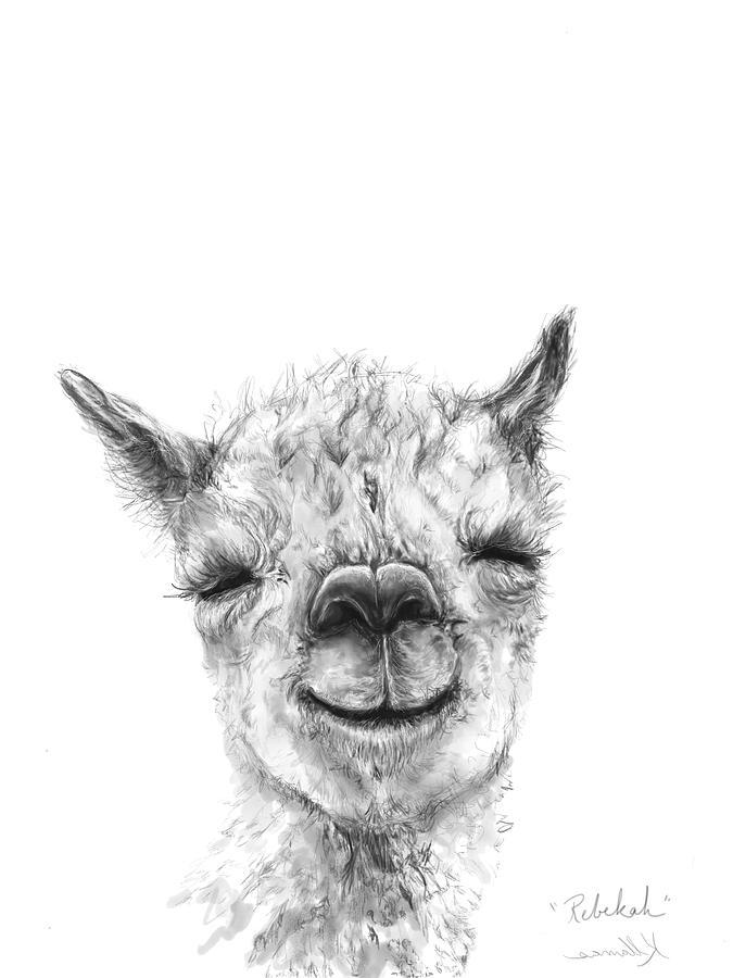 Llamas Drawing - Rebekah by K Llamas