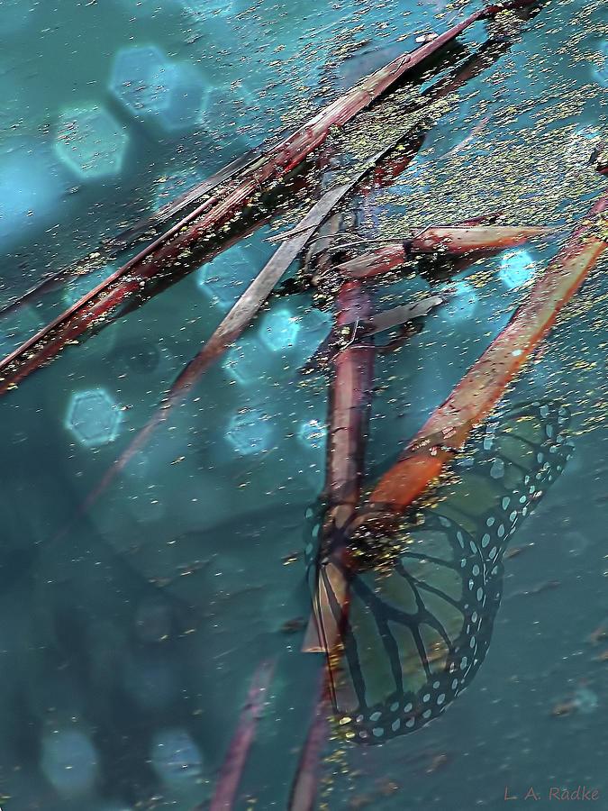 Water Photograph - Rebirth by Lauren Radke