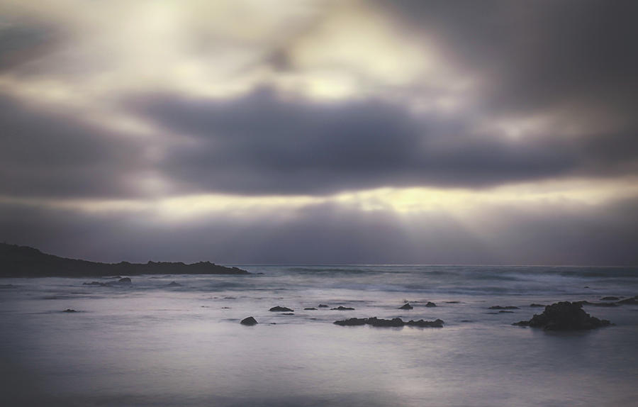 Pescadero Photograph - Reckoning by Laurie Search