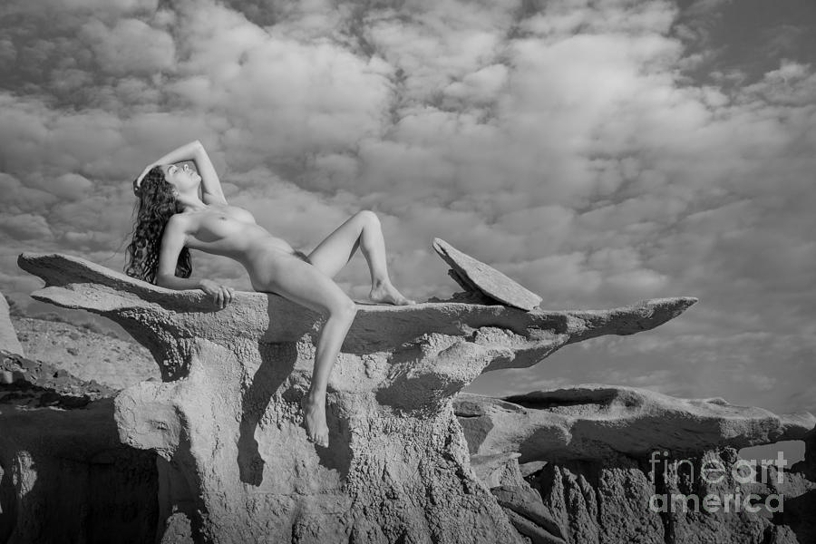 America Photograph - Reclined by Inge Johnsson