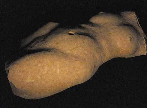 Reclining Nude Sculpture - Reclining Torso by Todd Malenke
