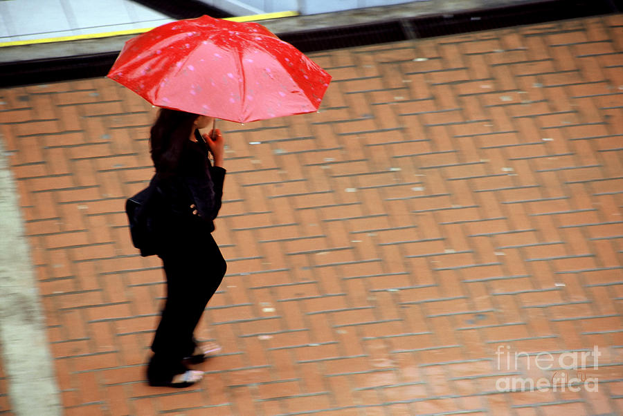 Rain Photograph - Red 1 - Umbrellas Series 1 by Carlos Alvim