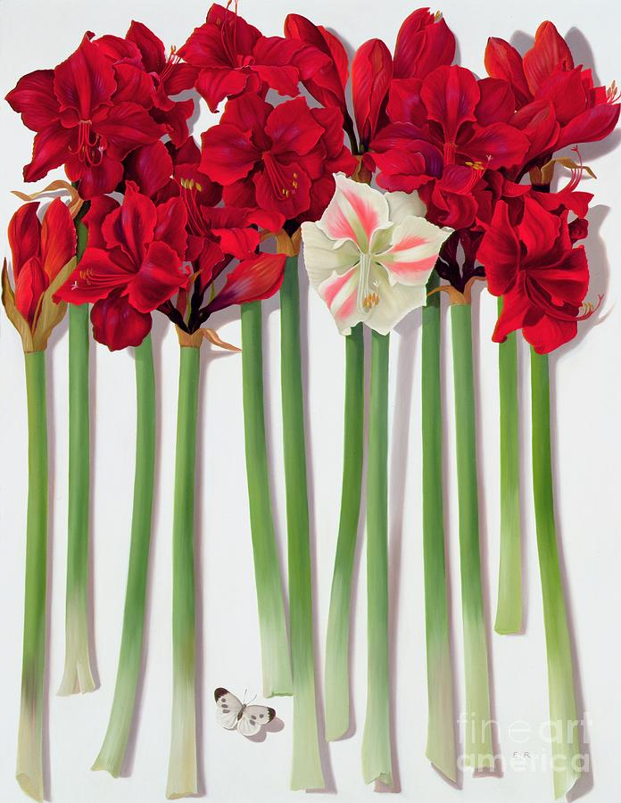 Red Painting - Red Amaryllis With Butterfly by Lizzie Riches