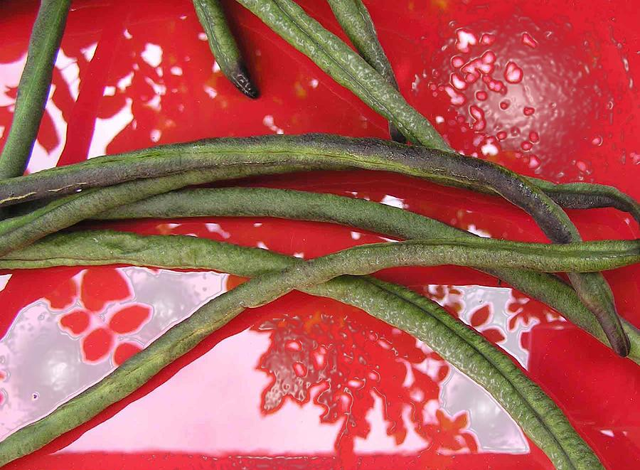 Beans Photograph - red and green N2 by Evguenia Men