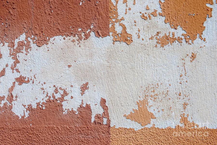 Wall Photograph - Red And Orange Abstract by Elena Elisseeva