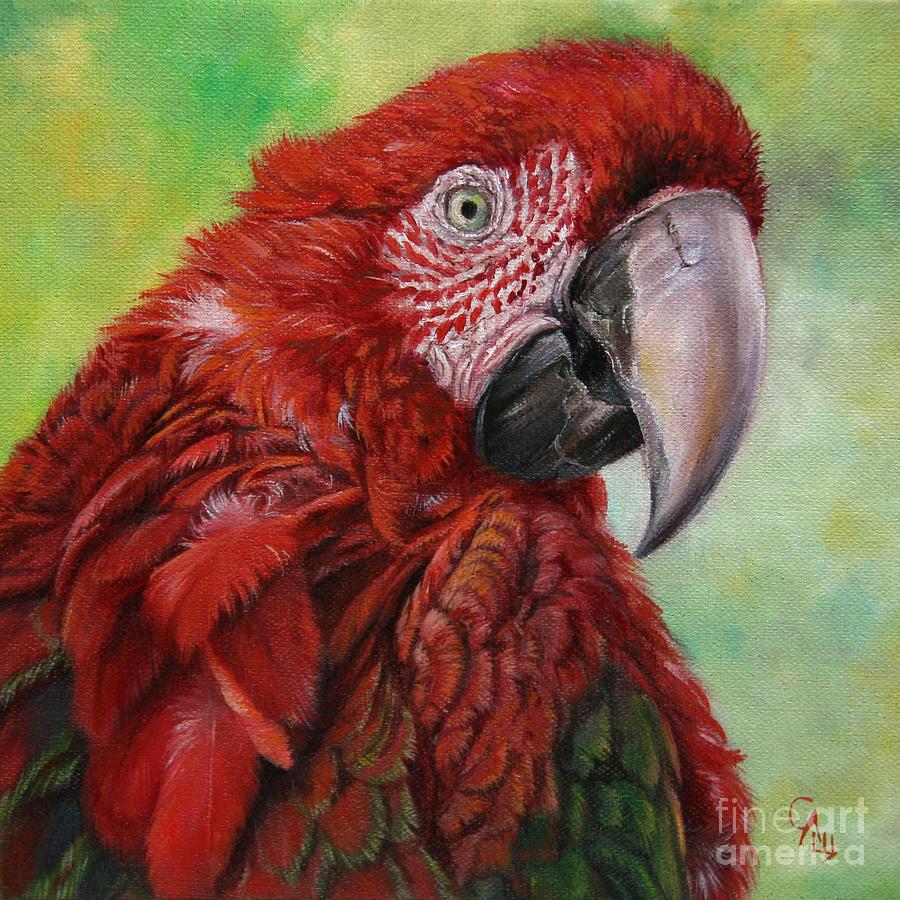 Nature Painting - Red  Ara Chloropterus Macaw by Svetlana Ledneva-Schukina