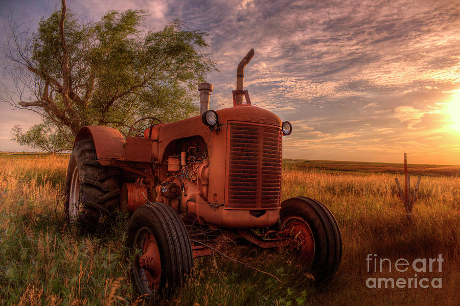 Red as the Sun Goes Down by Michele Richter