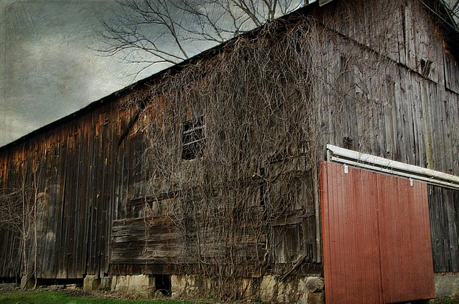 Barn Photograph - Red Barn Doors by Stephanie Calhoun