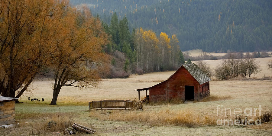 Hdr Photograph - Red Barn In Autumn by Idaho Scenic Images Linda Lantzy