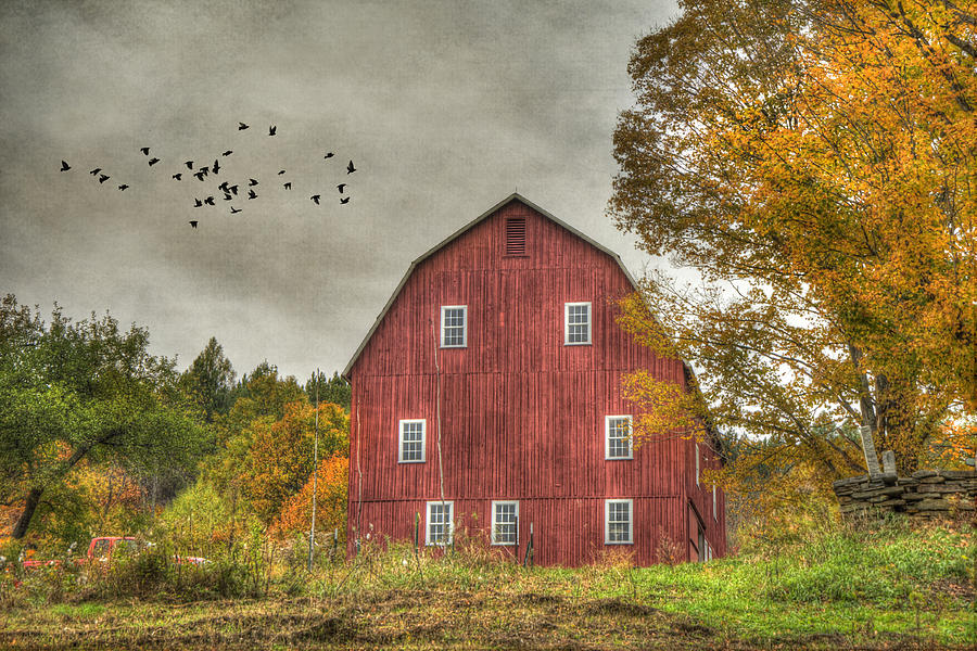 Red Barn In Fall Woodstock Vermont