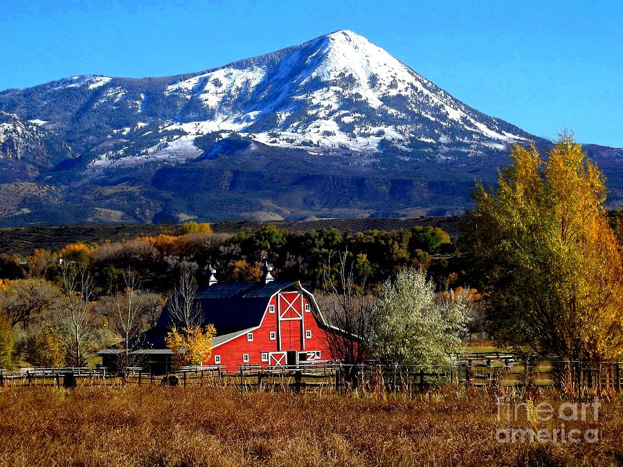 Red Barn In Paonia Colorado Digital Art by Annie Gibbons