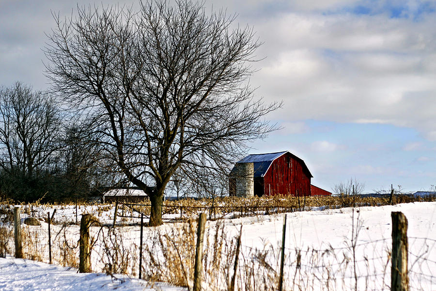 Red Barn Photograph - Red Barn Michigan by Kelly  Burke